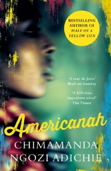 summer readiing americannah